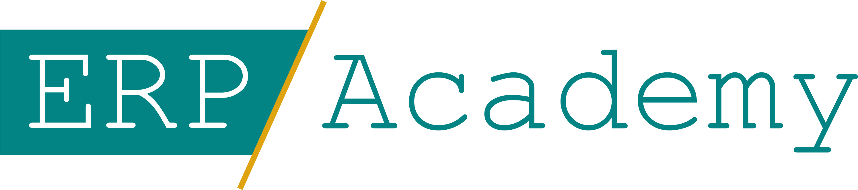 erp_academy_logo